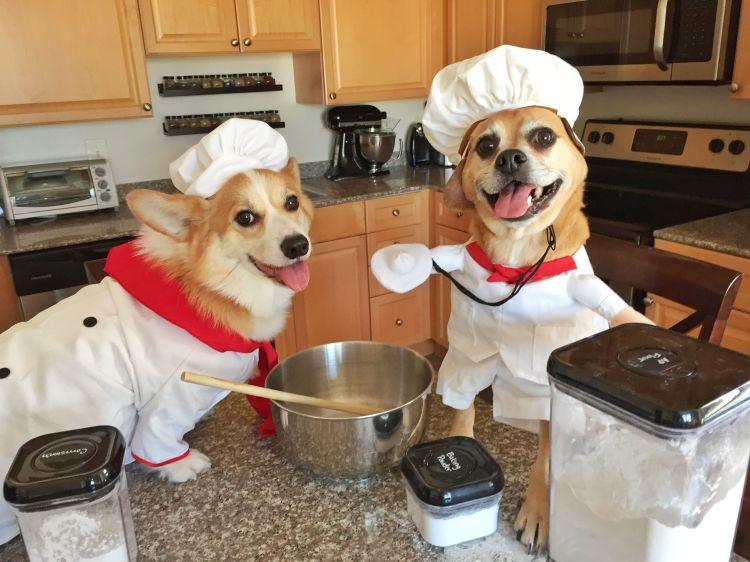 sue-chefs